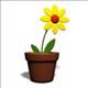 flowerpot