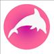 oceanic-dolphin