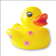 luv_a_duck