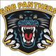 GMBpanthersfan