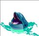 dolphingirl