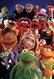 muppet237