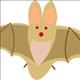 fruit_bat