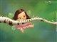 drama_fairy