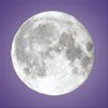 moonbeam5