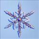snowflakesfalling