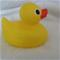 dippy_duck