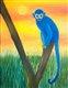 blue powder monkey