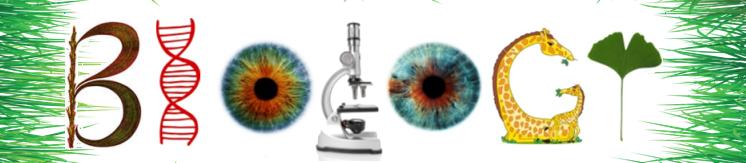 Biologysubjectresources's Shop